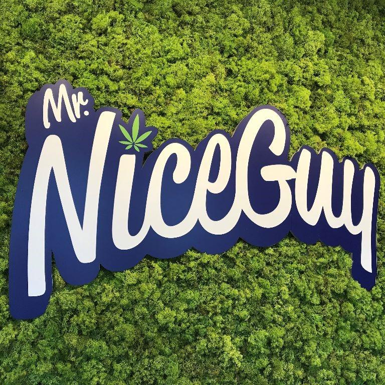 Mr. Nice Guy -...
