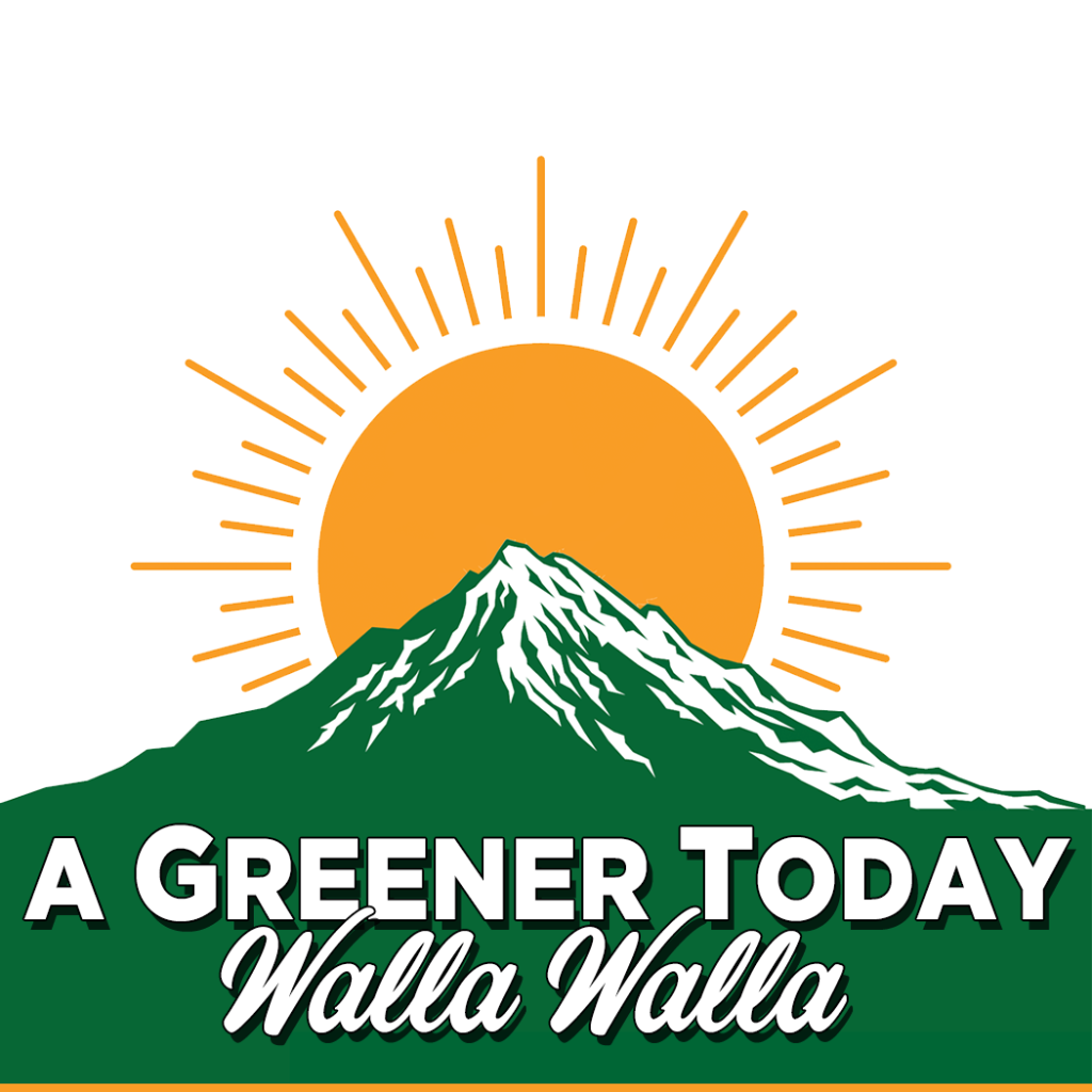 A Greener Today -...
