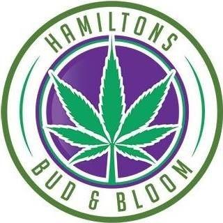 Hamiltons Bud & Bloom