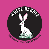 White Rabbit...
