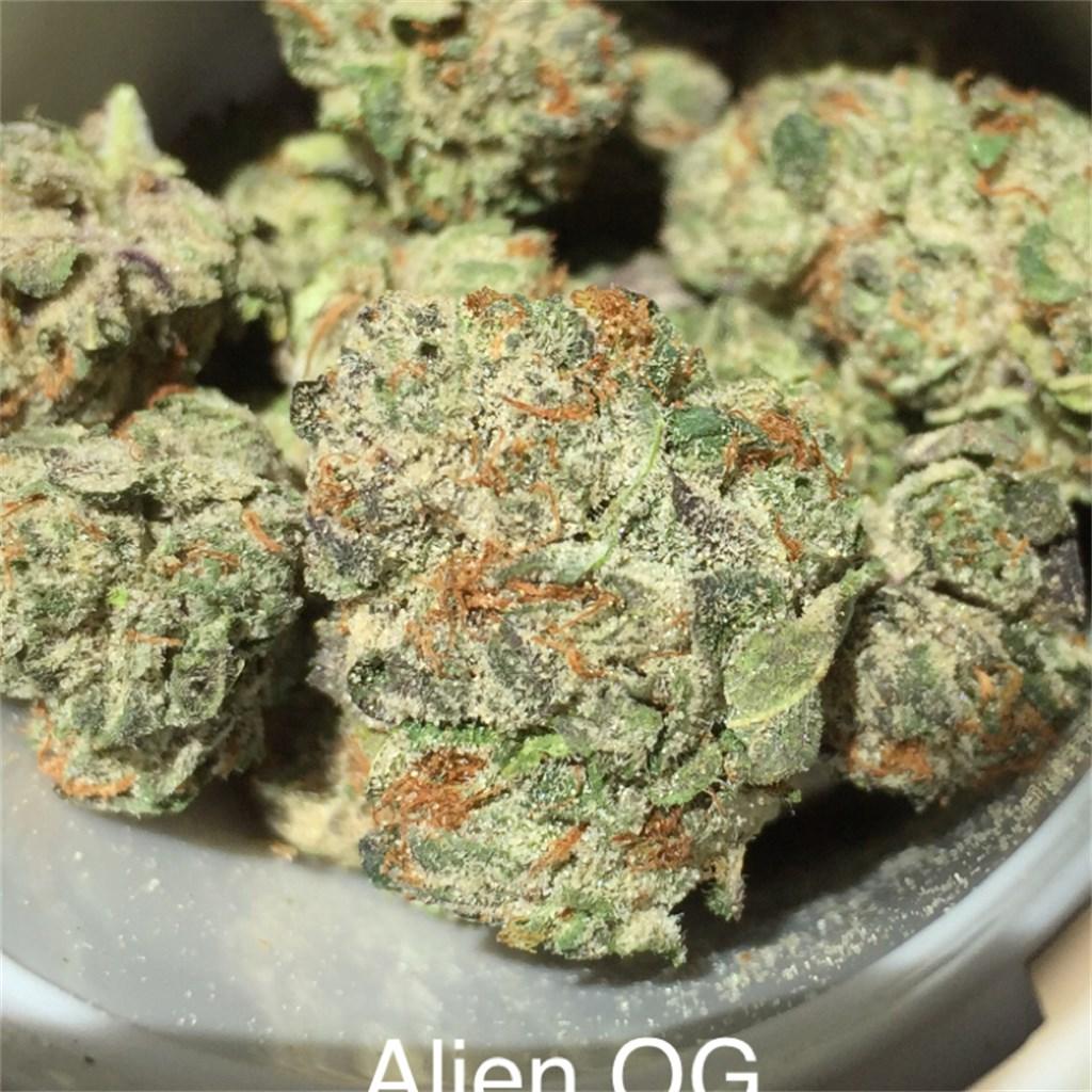 Alien сорт марихуаны все о конопле в хабаровском крае